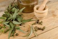Eucalyptus Oil Medical & Health Benefits